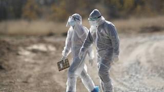 Καστοριά: Θετικοί στον κορωνοϊό δύο εργαζόμενοι σε φάρμα βιζόν