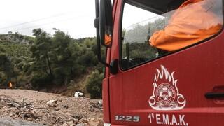 Λήξη συναγερμού στην Εύβοια: Βρέθηκαν οι δύο νεαροί