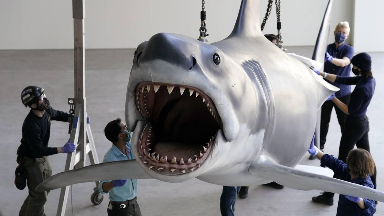Στα σαγόνια του καρχαρία: Ο Μπρους βρίσκει τη θέση του στο Μουσείο των Όσκαρ (pics)