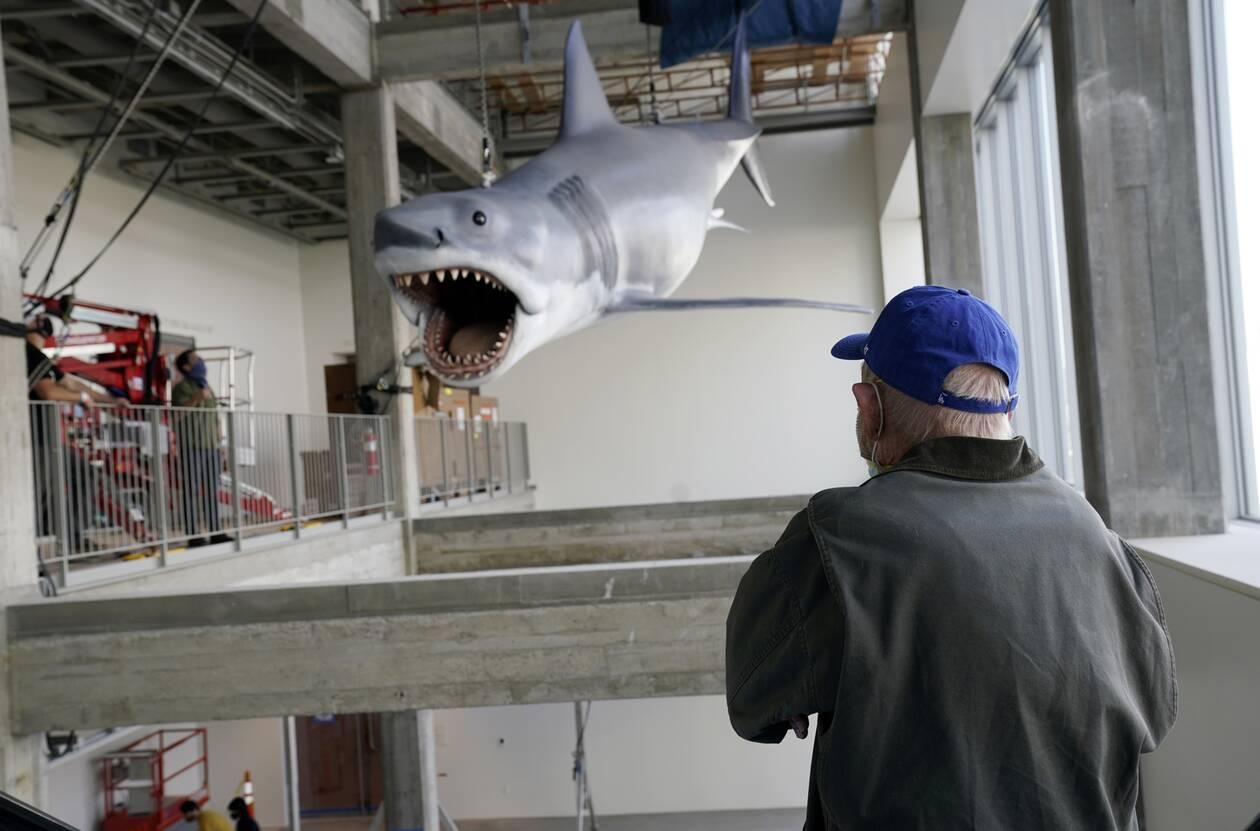 https://cdn.cnngreece.gr/media/news/2020/11/24/244089/photos/snapshot/Shark11.jpg