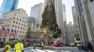 Νέα Υόρκη: Το Χριστουγεννιάτικο δέντρο της πόλης... απαντάει στις επικρίσεις (pics)