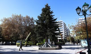Χριστούγεννα 2020: Τοποθετήθηκε το δέντρο στο Σύνταγμα, έτοιμο να στολιστεί