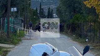Συναγερμός στην Παιανία: Ηλικιωμένη πυροβόλησε με καραμπίνα και ταμπουρώθηκε σπίτι της