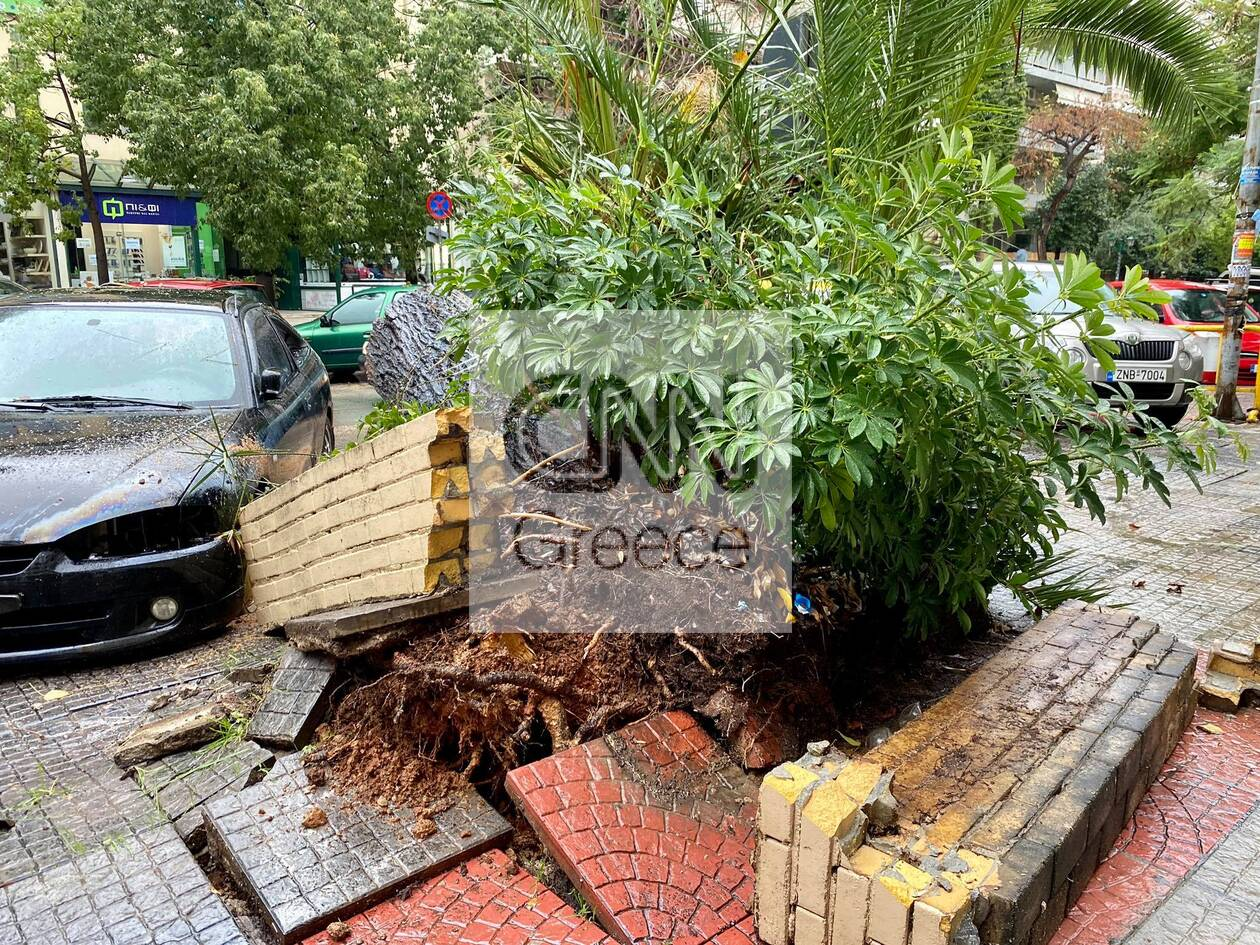https://cdn.cnngreece.gr/media/news/2020/12/14/246757/photos/snapshot/nea-smyrni-2.jpg