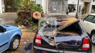 Κακοκαιρία: Διακοπή κυκλοφορίας και πτώσεις δέντρων στην Αττική