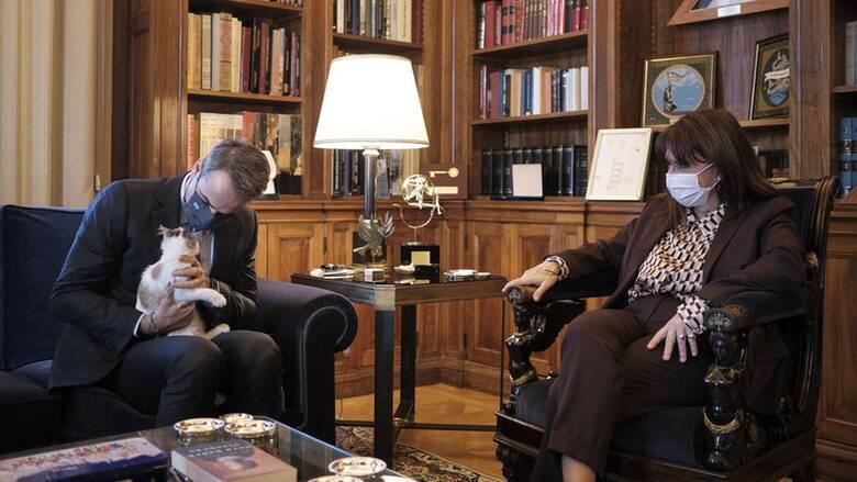 Καλυψώ: Η γάτα του Προεδρικού Μεγάρου στην αγκαλιά του Κυριάκου Μητσοτάκη