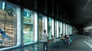 Ολλανδία: Υποβρύχιο Μουσείο γύρω από ναυάγιο 271 ετών - Η τραγική ιστορία του «Άμστερνταμ»