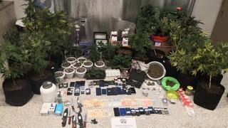 Μέγαρα: Εξαρθρώθηκε μεγάλη σπείρα διακίνησης ναρκωτικών