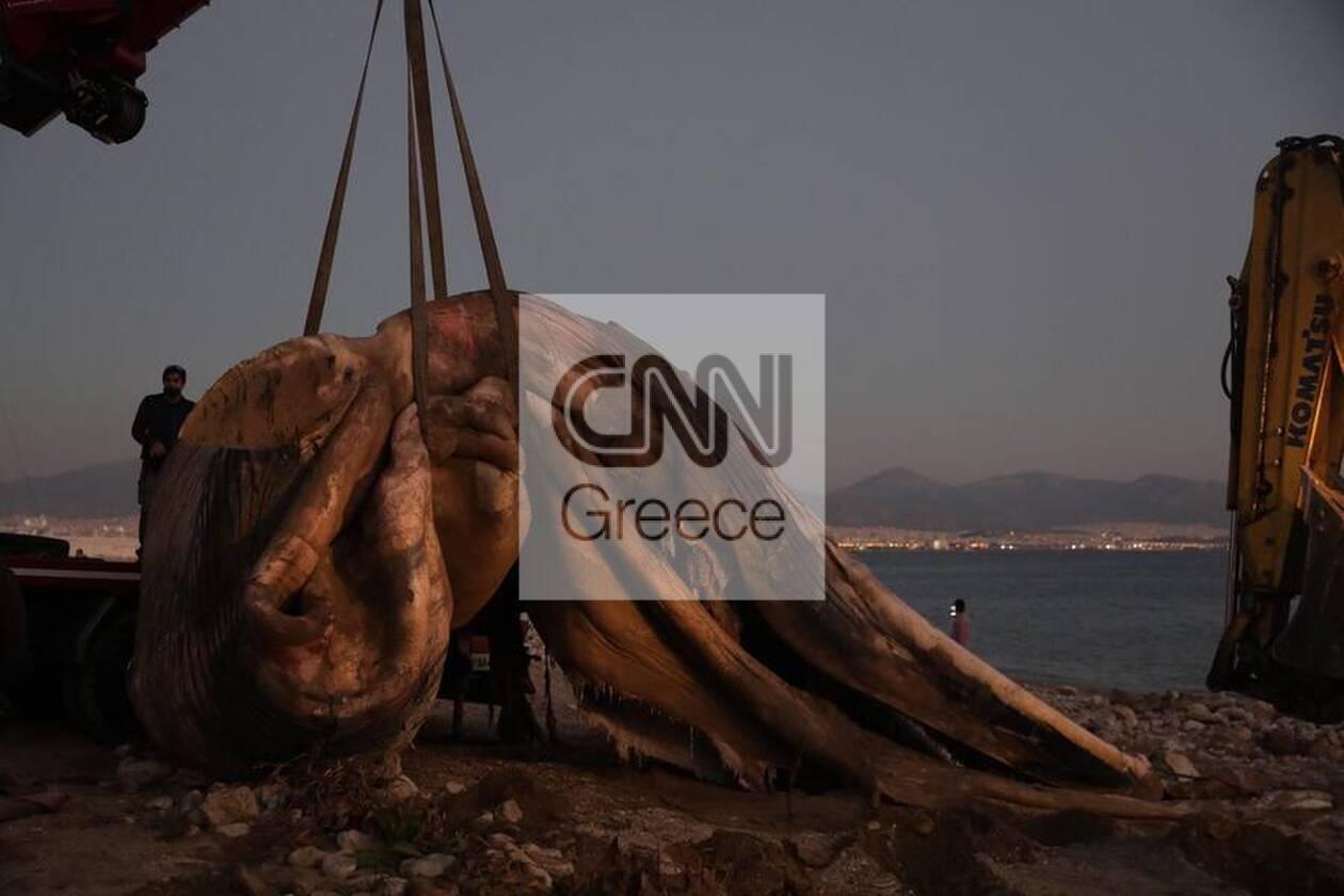 https://cdn.cnngreece.gr/media/news/2020/12/24/248133/photos/snapshot/5fe3670635f36.jpg