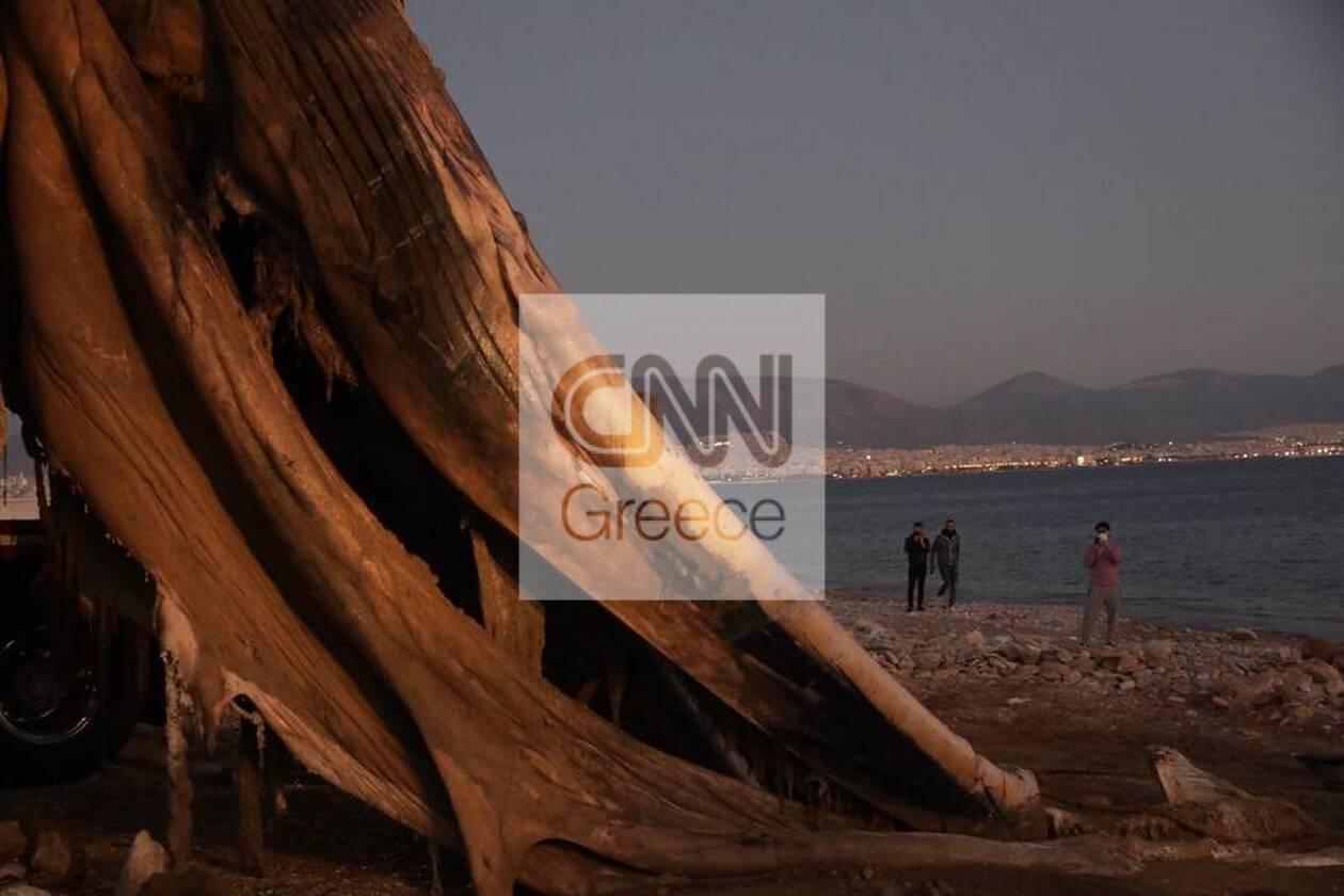 https://cdn.cnngreece.gr/media/news/2020/12/24/248133/photos/snapshot/5fe367082ced5.jpg