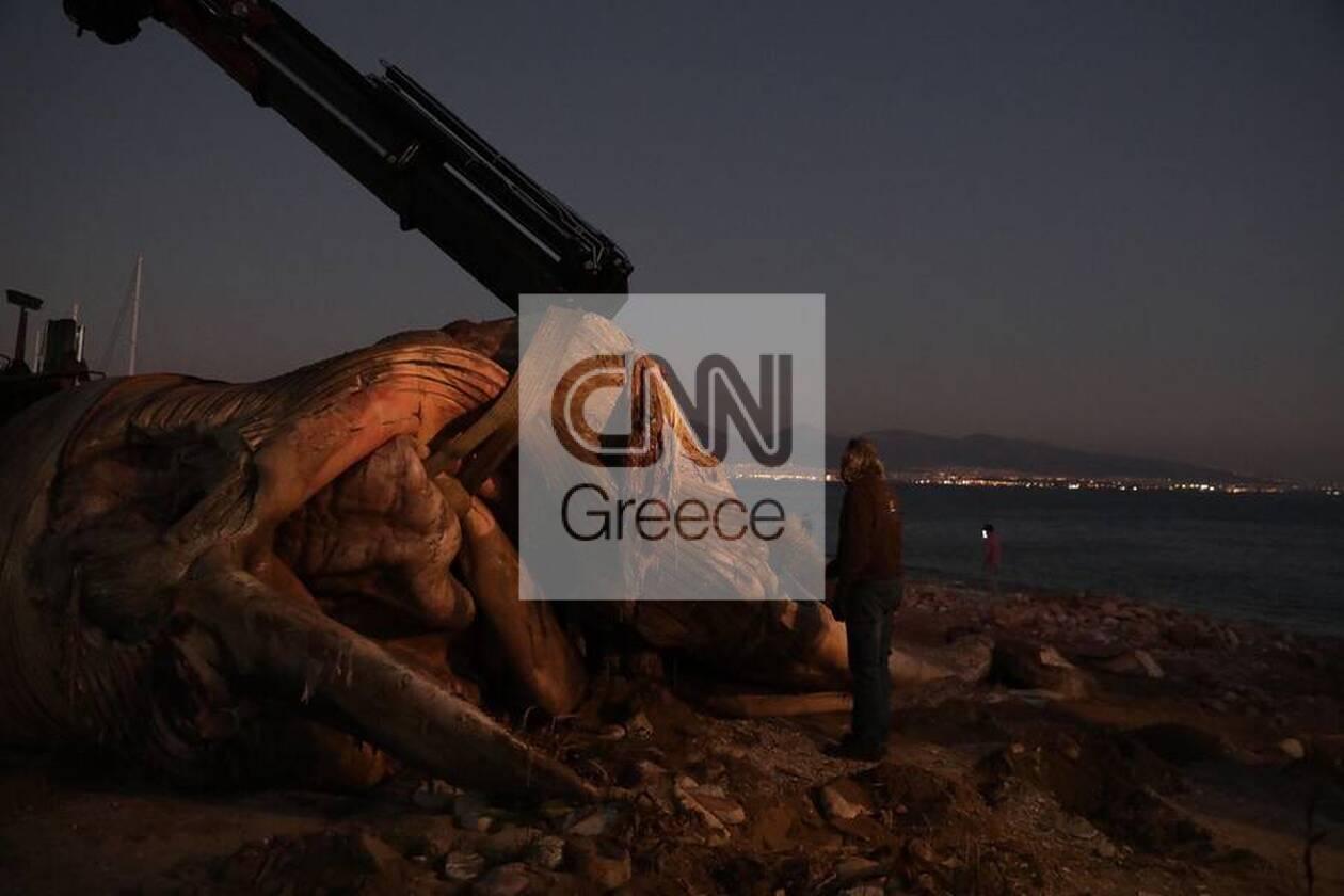https://cdn.cnngreece.gr/media/news/2020/12/24/248133/photos/snapshot/5fe3670b48f24.jpg