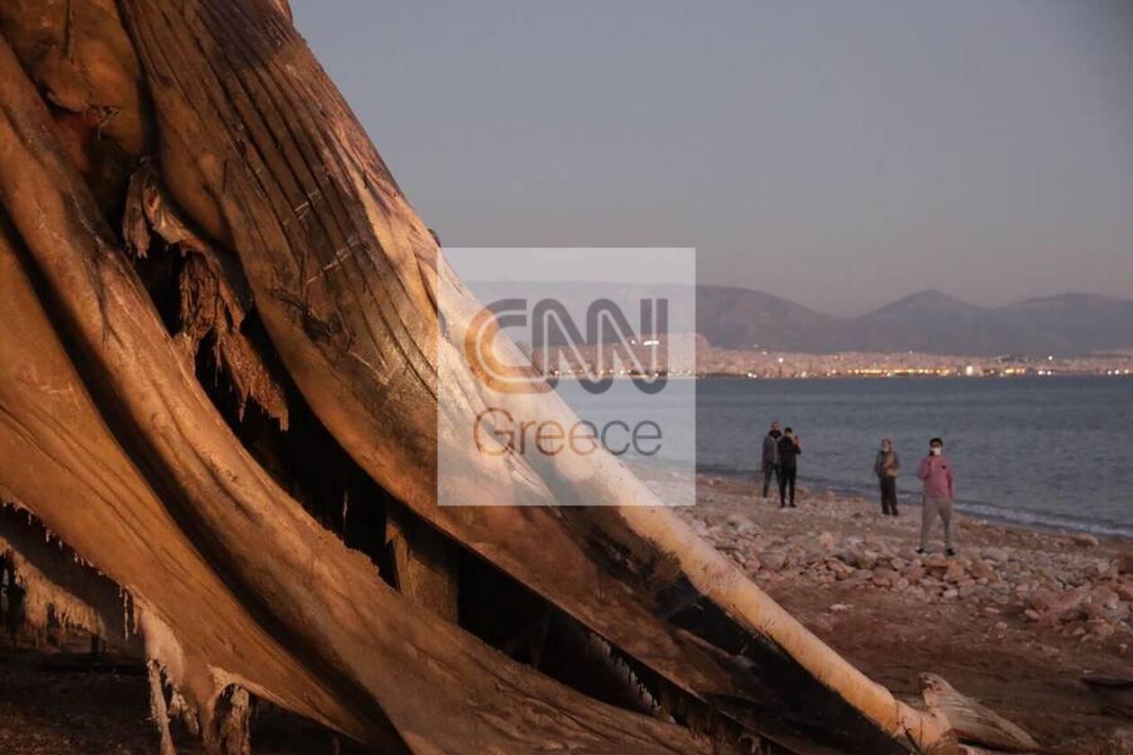 https://cdn.cnngreece.gr/media/news/2020/12/24/248133/photos/snapshot/5fe3670d3c406.jpg