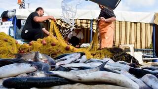 Lockdown: Eπιτρέπεται η μετακίνηση για κυνήγι και ψάρεμα - Δείτε το ΦΕΚ