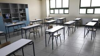 Σχολεία: Άνοιγμα δημοτικών και νηπιαγωγείων στις 11/1 ανακοίνωσε το υπουργείο Παιδείας