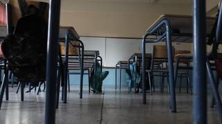 Σχολεία: Πώς θα ανοίξουν τα δημοτικά και νηπιαγωγεία στις 11 Ιανουαρίου