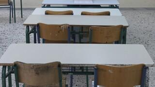 Κορωνοϊός - Επιτροπή Λοιμωξιολόγων: Δημοτικά και νηπιαγωγεία ανοίγουν στις 11 Ιανουαρίου