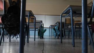 Σχολεία - Δερμιτζάκης: Θα μπορούσαν να ανοίξουν όλες οι εκπαιδευτικές βαθμίδες