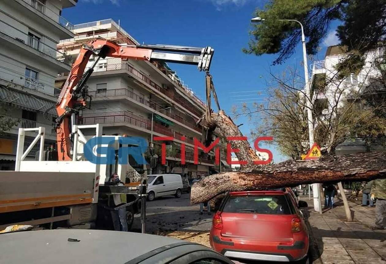 https://cdn.cnngreece.gr/media/news/2021/01/12/250285/photos/snapshot/thessaloniki-2.jpg