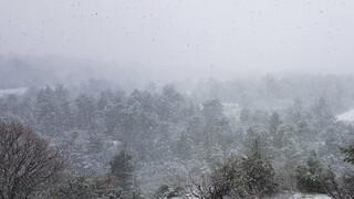 Καιρός: Ψυχρή εισβολή από τον «Λέανδρο» - Πού θα χιονίσει