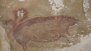 Ινδονησία: Ανακαλύφθηκε η αρχαιότερη σπηλαιογραφία ζώου - Δημιουργήθηκε πριν από 45.000 χρόνια
