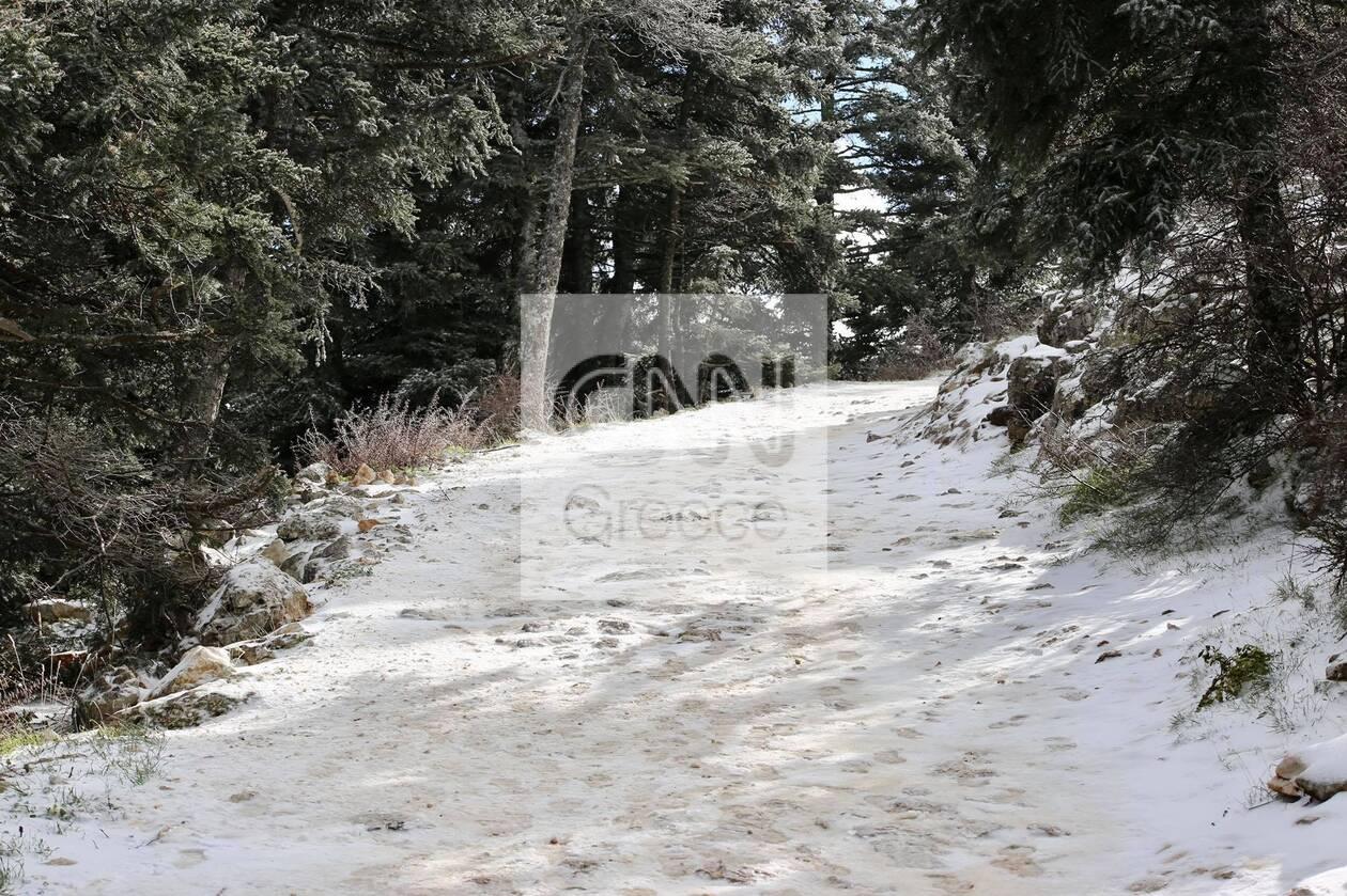 https://cdn.cnngreece.gr/media/news/2021/01/14/250514/photos/snapshot/xionia-parnitha-3.jpg
