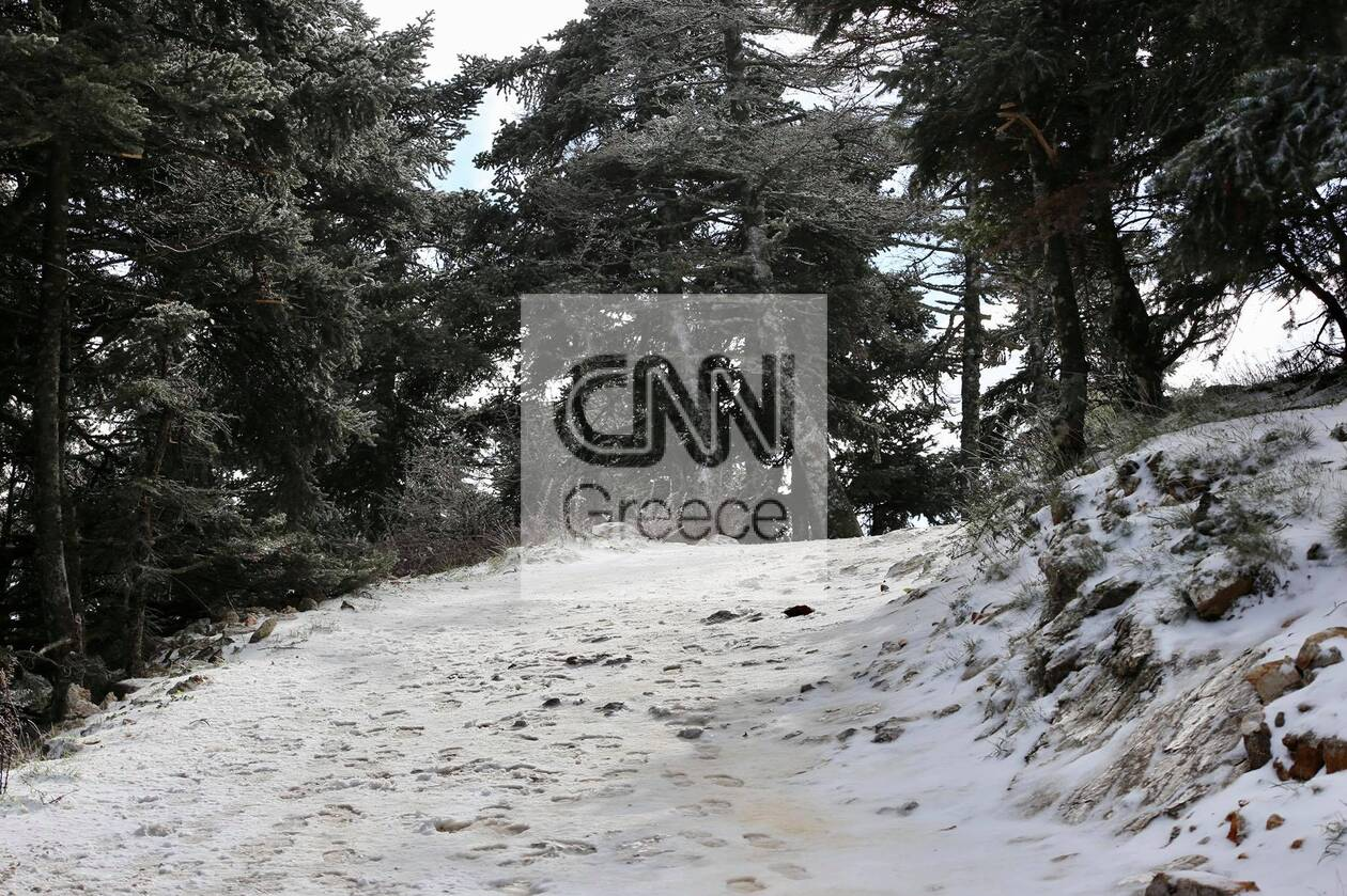 https://cdn.cnngreece.gr/media/news/2021/01/14/250514/photos/snapshot/xionia-parnitha-7.jpg