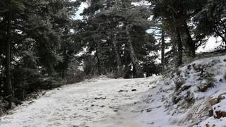 Κακοκαιρία: Προειδοποίηση της γγ Πολιτικής Προστασίας για τον χιονιά