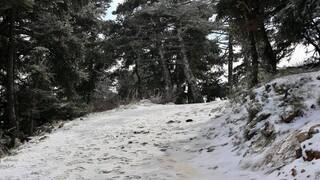 Κακοκαιρία «Λέανδρος»: Ψυχρή εισβολή σε όλη τη χώρα - Χιόνι και στην Αττική