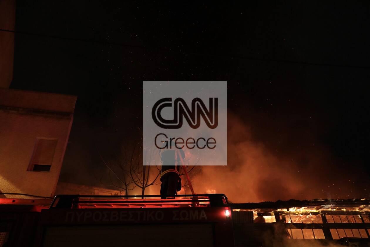 https://cdn.cnngreece.gr/media/news/2021/01/15/250633/photos/snapshot/fwtia-liosiwn-megalh-apothiki-6.jpg