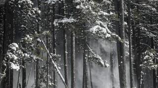 Καιρός: Συνεχίζεται το σφοδρό κύμα κακοκαιρίας - Χιόνι και στην Αττική