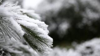 Κακοκαιρία «Λέανδρος»: Στα «λευκά» η Θεσσαλονίκη