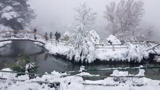 Καιρός: Στην «κατάψυξη» και την Κυριακή η χώρα - Συνεχίζονται οι χιονοπτώσεις
