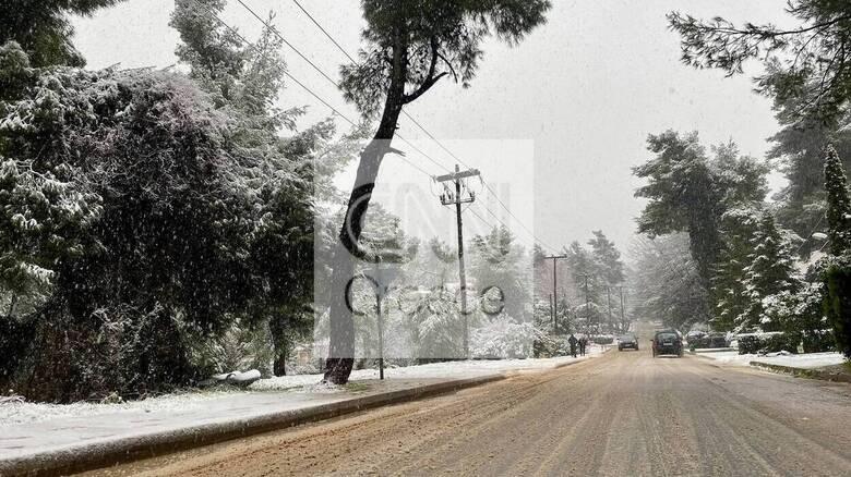 Κακοκαιρία «Λέανδρος»: Ποιοι δρόμοι είναι κλειστοί