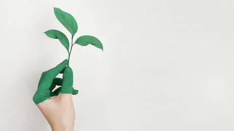 Η «πράσινη» ομορφιά αλλάζει αλλά όχι όπως μπορεί να νομίζεις