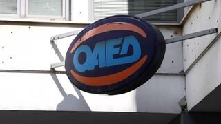 ΟΑΕΔ: Μέχρι 1η Φεβρουαρίου οι αιτήσεις για το πρόγραμμα απασχόλησης ανέργων 18-29 ετών
