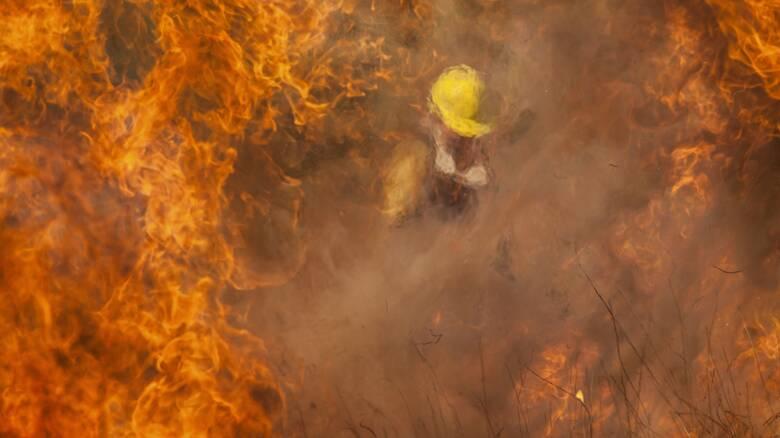 Αργεντινή: «Στάχτη» 65.000 στρέμματα δάσους από πυρκαγιά που μαίνεται