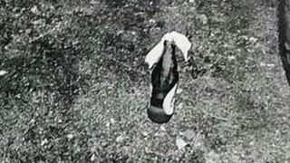 Μενίδι: Φωτογραφίες από τις μολότοφ και τις πέτρες των 14 συλληφθέντων