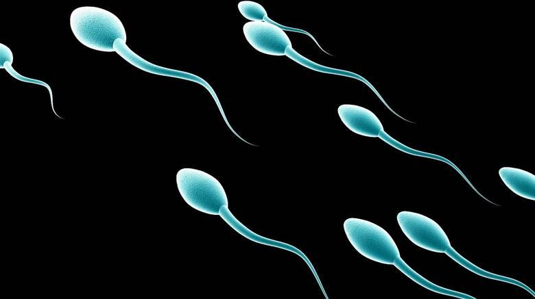 Επηρεάζει ο κορωνοϊός την ανδρική γονιμότητα; Νέα μελέτη προκαλεί διχογνωμία