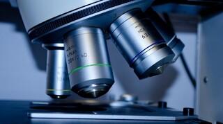 Θαψιγαργίνη: Ένα νέο «όπλο» στη φαρέτρα των γιατρών;