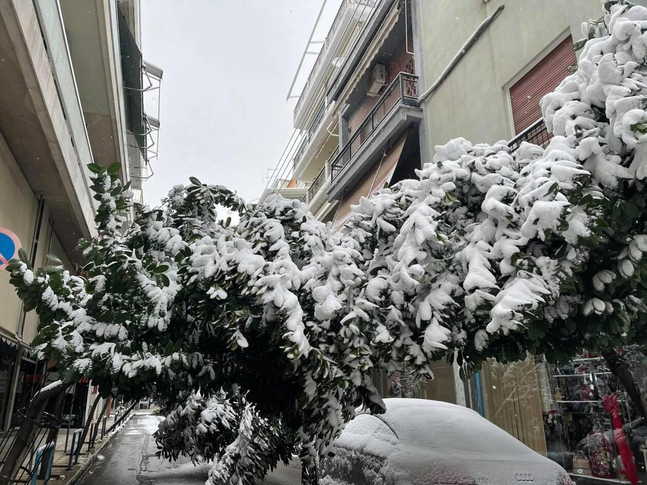 https://cdn.cnngreece.gr/media/news/2021/02/14/254488/photos/snapshot/larisa-xionia.jpg