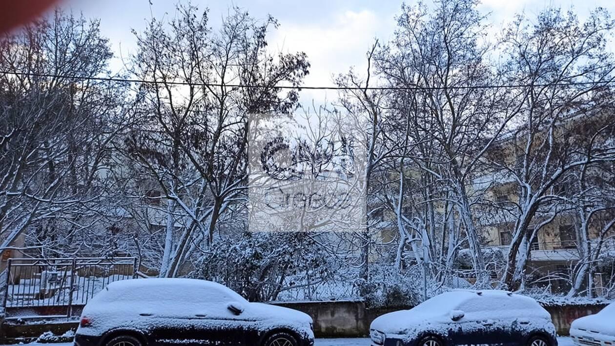 https://cdn.cnngreece.gr/media/news/2021/02/15/254552/photos/snapshot/melissia-hioni3.jpg