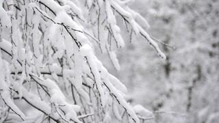 Κακοκαιρία «Μήδεια»: Χαμηλές θερμοκρασίες και χιόνια στη Λάρισα - Πού χρειάζονται αλυσίδες