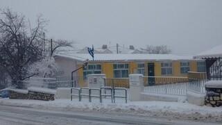 Κακοκαιρία «Μήδεια» - Ζάκυνθος: Προβλήματα στο οδικό δίκτυο - Κλειστά τα σχολεία