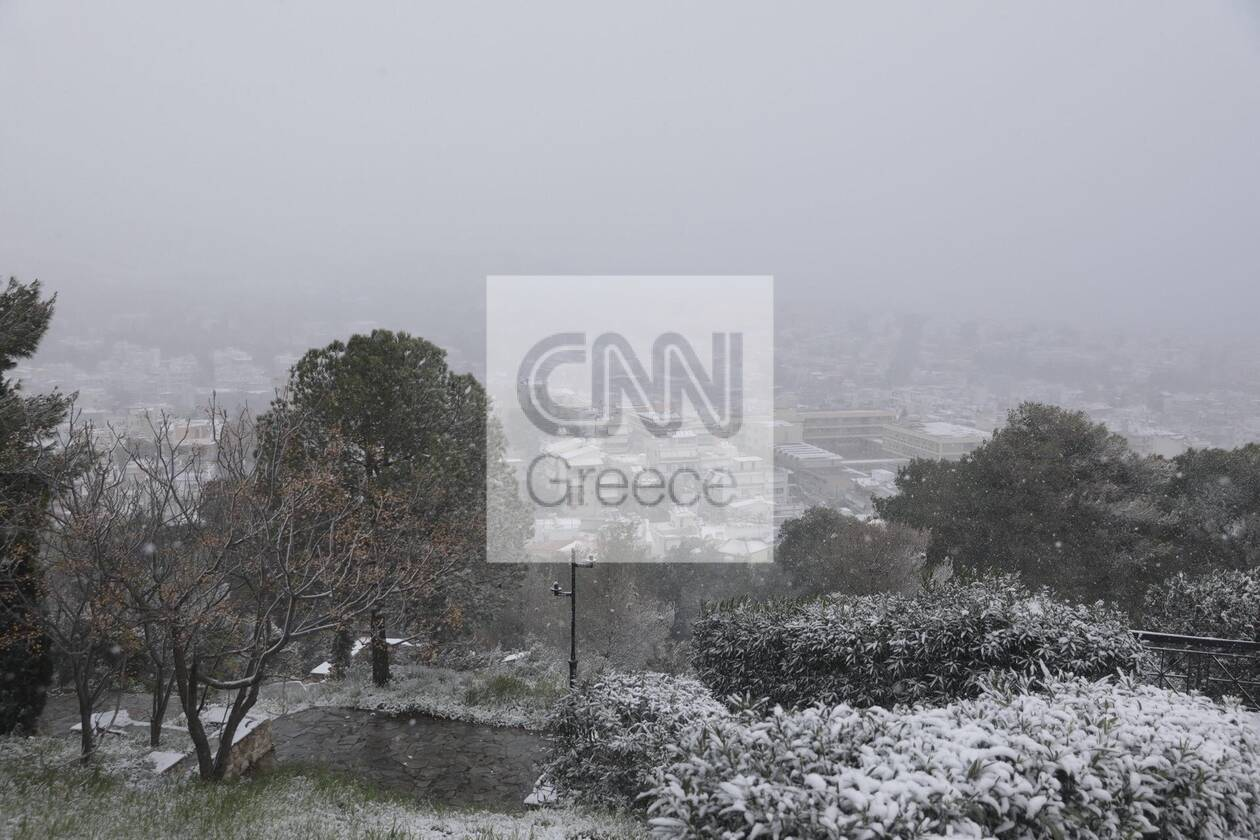 https://cdn.cnngreece.gr/media/news/2021/02/15/254593/photos/snapshot/xaidari-xionia-15-2-5.jpg