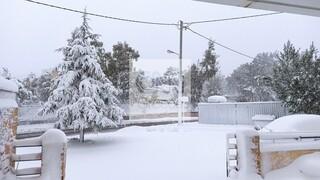 Κακοκαιρία «Μήδεια»: Παραμένουν οι διακοπές ρεύματος σε Αττική και Εύβοια