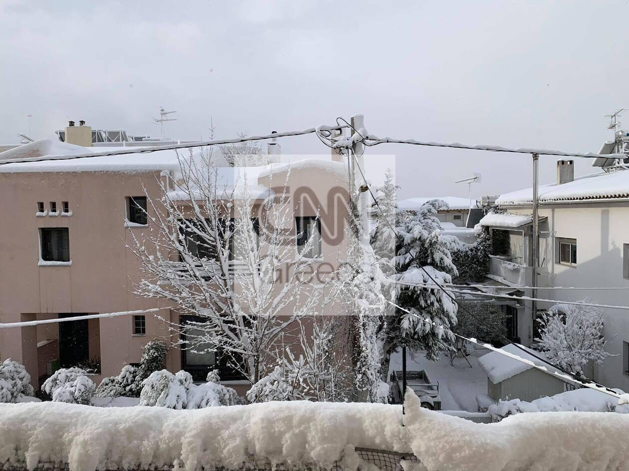 https://cdn.cnngreece.gr/media/news/2021/02/16/254706/photos/snapshot/patima_xalandriou.jpg