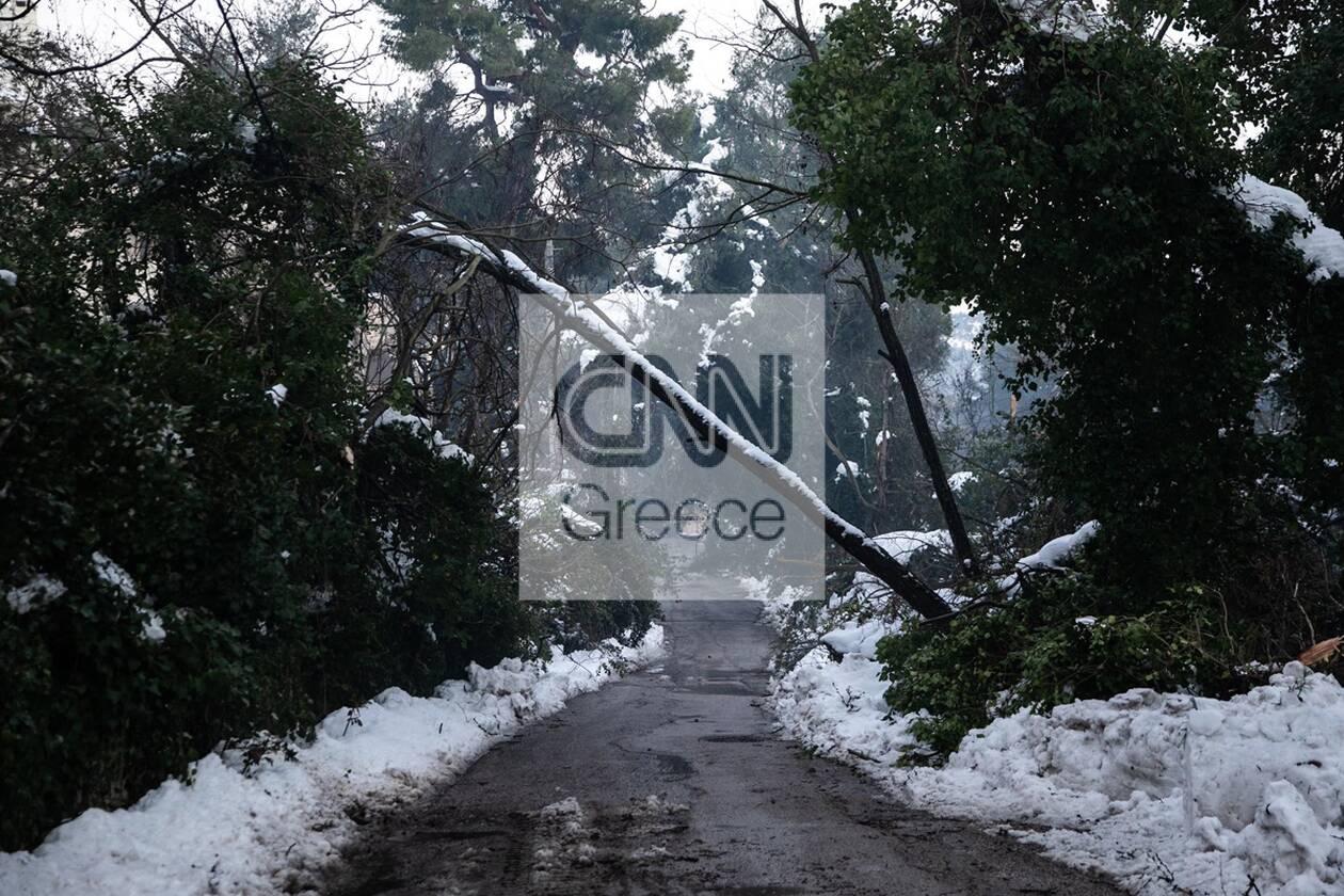 https://cdn.cnngreece.gr/media/news/2021/02/17/254953/photos/snapshot/151345185_1048733992279406_1501278488733706108_n.jpg