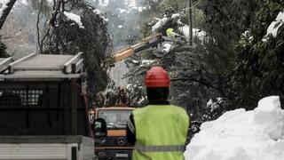 Μετά τη «Μήδεια»: Εργασίες νυχθημερόν για τα τελευταία 1.000 σπίτια χωρίς ρεύμα