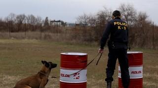 Θεσσαλονίκη: Ο αστυνομικός σκύλος «Ακύλας» οδήγησε στη σύλληψη δύο διακινητών ναρκωτικών