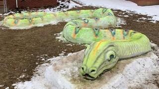 Ντένβερ: Οικογένεια ξετρελαίνει τη γειτονιά με ένα τεράστιο φίδι από χιόνι